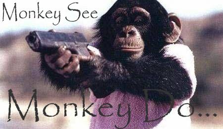 Blurb_MonkeySeeMonkeyDo_20080812