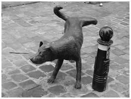 Pissing-Dog-Art
