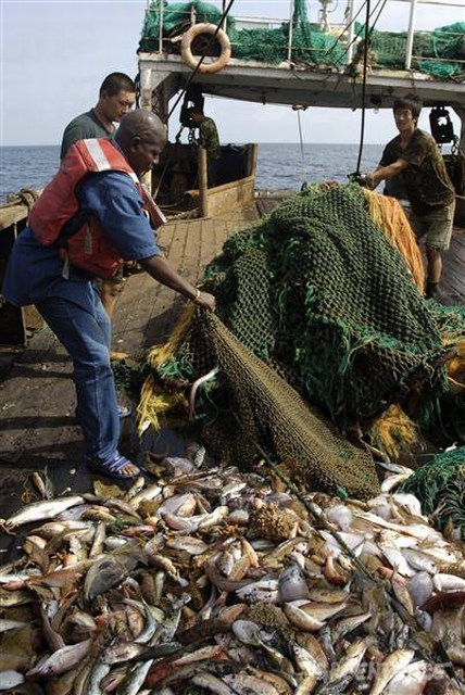Guinean-fishery-inspector-on-b