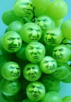 Grapes-print