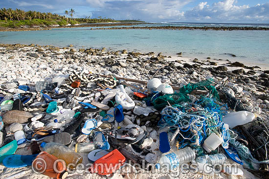 24M1910-03D-marine-pollution