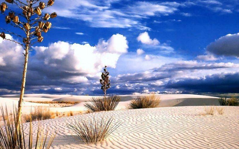 Desert_9