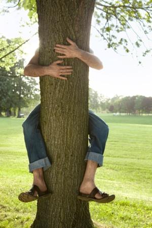 Tree_hug1