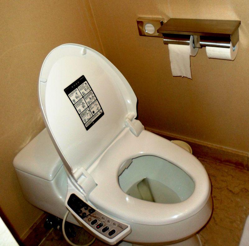 Jeju toilet